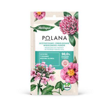 Polana – Maseczka do twarzy Oczyszczanie i Zmniejszenie Widoczności Porów - każdy rodzaj cery (8 g)
