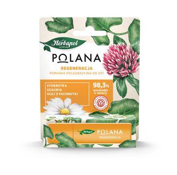 Polana – Pomadka pielęgnacyjna do ust Regeneracja (4.7 g)