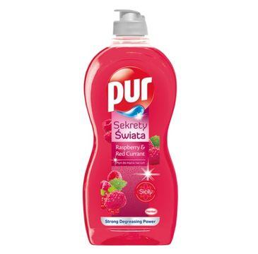 Pur płyn do naczyń malina i czerwona porzeczka (450 ml)