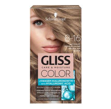 Gliss Color krem koloryzujący do włosów 8-16 Naturalny Popielaty Blond (1 op.)