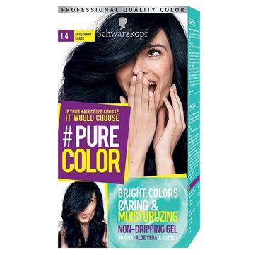 Schwarzkopf Pure Color farba do włosów w żelu nr 1.4 Blueberry Black  1 op.