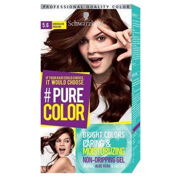 Schwarzkopf Pure Color farba do włosów w żelu nr 5.6 Chocolate Praline 1 op.