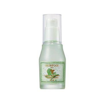 Skinfood Lettuce & Cucumber Watery Essence nawadniające serum do twarzy z organiczną sałatą i ogórkiem (45 ml)