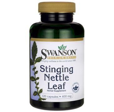 Swanson Pokrzywa 400mg suplement diety 120 kapsułek