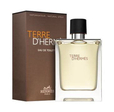 Terre D'Hermes woda toaletowa 100 ml