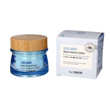 The SAEM Iceland Water Volume Cream krem nawilżający do twarzy - cera mieszana 80 ml