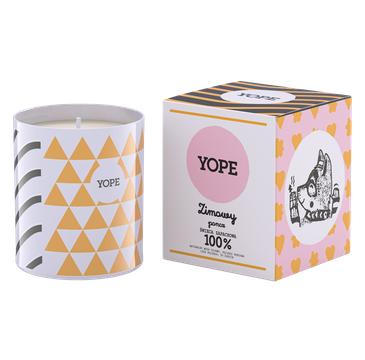 Yope – Świeca zapachowa Zimowy Poncz (200 g)