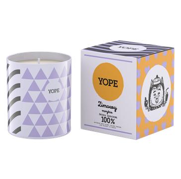 Yope – Świeca zapachowa Zimowy Rarytas (200 g)