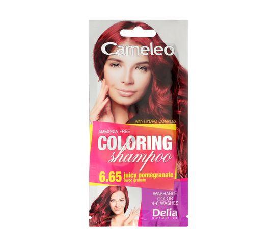 Delia Cameleo Szampon koloryzujący 6.65 Owoc Granatu (40 ml)