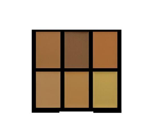 Freedom Pro Conceal Palette Medium/Dark Paleta korektorów Medium/Dark do twarzy 1 szt