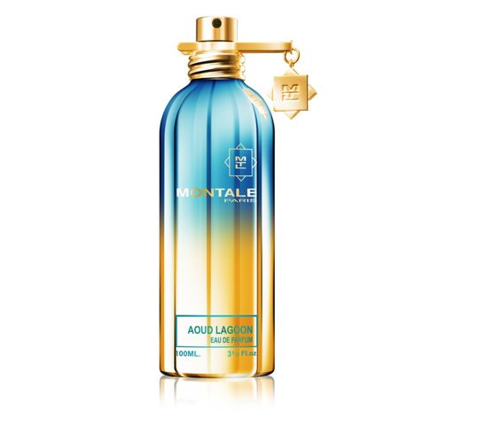 Montale Aoud Lagoon woda perfumowana spray 100 ml